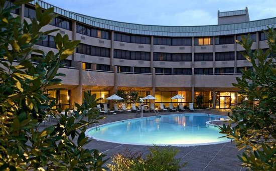 Sheraton Reston Hotel: Pool