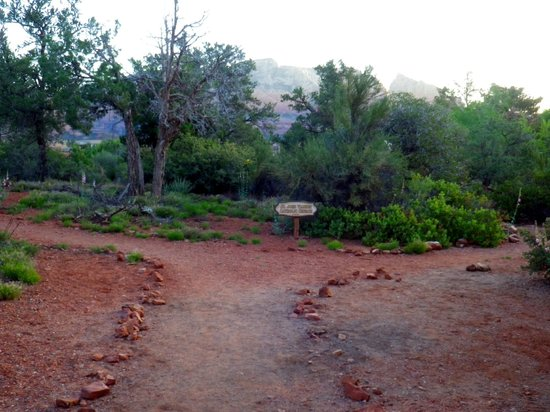 BEST WESTERN PLUS Inn of Sedona: Pathway near hotel