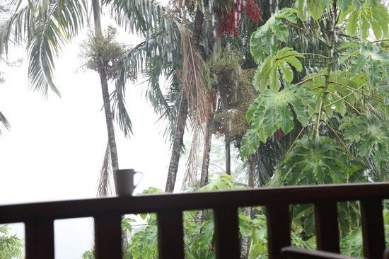 Hotel Costa Verde: Rainforest Rainy Day