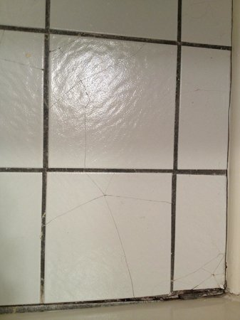 Henderson Park Inn: Tiles by tub.
