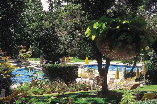 The King David: Swimming pool surrounded by landscaped Gardens