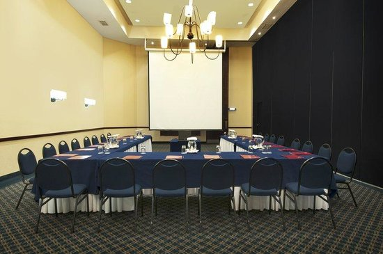 Fiesta Inn Periferico Sur: Meeting Room
