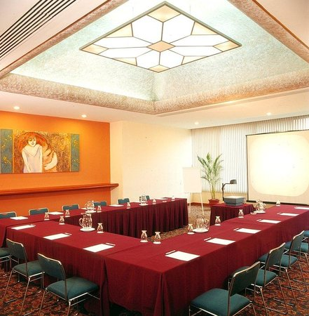 Holiday Inn Select Guadalajara: Meeting Room