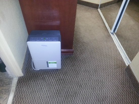 Howard Johnson Inn Ormond Beach: The dehumidifier, and the great looking carpet