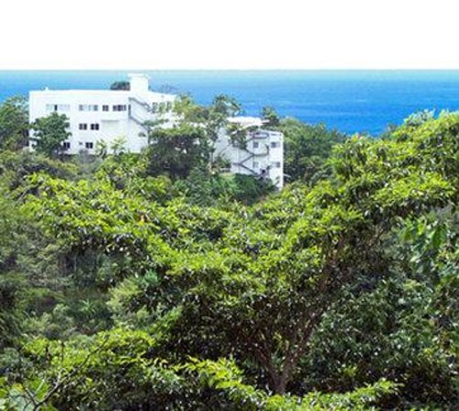 Gaia Hotel & Reserve: Gaia View From Atop Nature Reserve