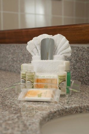 Holiday Inn San Jose Downtown Aurola: Bathroom Amenities