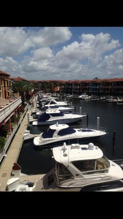 Naples Bay Resort: Marina view