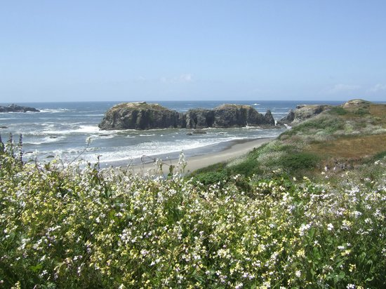 Bandon Beach Motel: Coquille Point