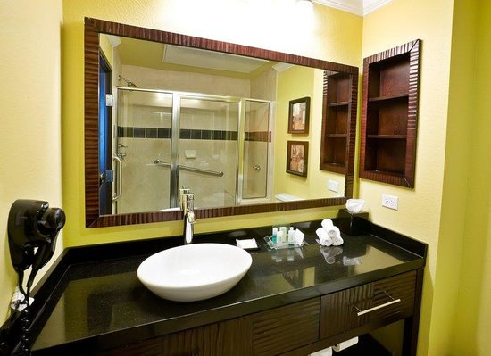 Holiday Inn Hotel &amp; Suites McKinney - Fairview: King Rooms feature Showers with built-in bench seats.