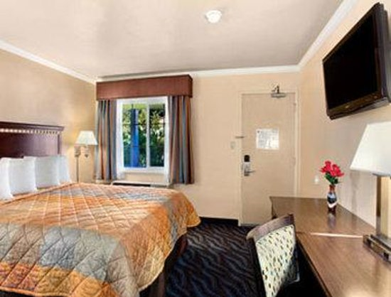 Super 8 Berkeley: Standard Queen Bed Room