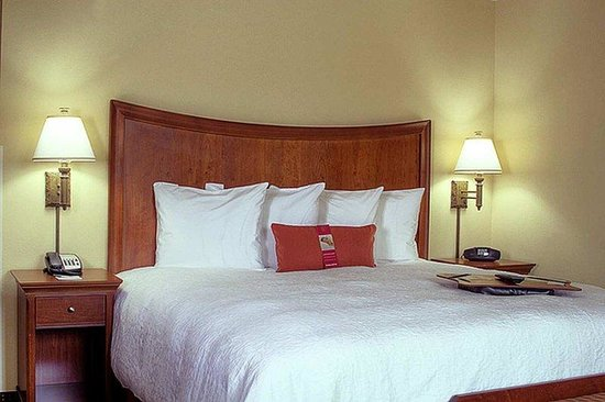 Hampton Inn & Suites Stuart-North: King Room