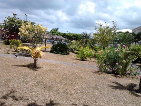 Coyaba Beach Resort: Coyaba Gardens