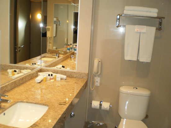 Hotel Atton San Isidro: bathroom