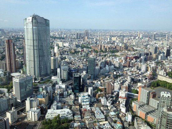 The Ritz-Carlton Tokyo: View from Deluxe Room