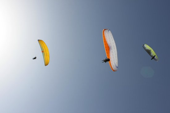 Paragliding with Sasha in Motovun