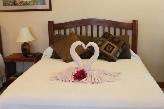 Iguana Reef Inn: Towel Art