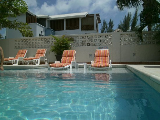 Iguana Reef Inn: Beautiful Pool with comfy chairs