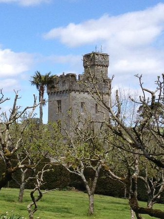 lismore castle and upper gardens
