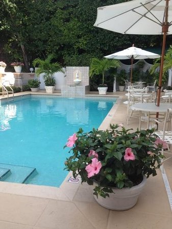 The Chesterfield Palm Beach: The Chesterfield - private pool & patio