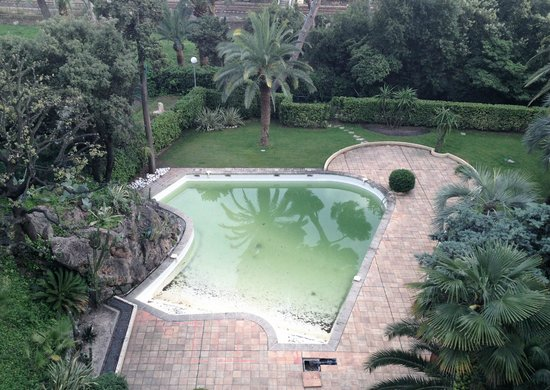 Avangani Resort Hotel : Pool with frogs in it