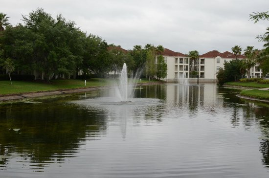 Star Island Resort and Club: View of lake