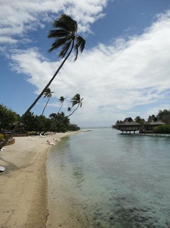 InterContinental Resort &amp; Spa Moorea: Beach Bungalows on the left and regular bungalows on the right.  Lagoon cuts thru resort.