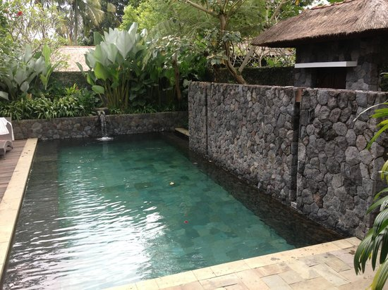 Kayumanis Ubud Private Villa & Spa: Pool side