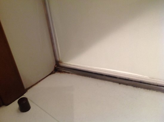 Wilson Boutique Hotel: equally dirty shower door