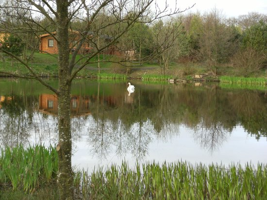 Morpeth, UK: View from lakeside cabin