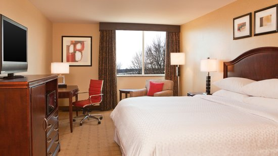 Four Points by Sheraton Kalamazoo: Guestroom King