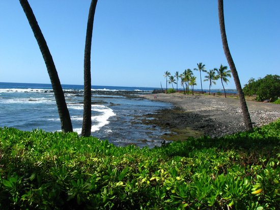 Keauhou Kona Surf And Racquet Club Resort: scene from rear of unit 198