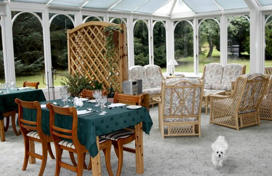 Carrbridge, UK : Dining Room in the Conservatory, starring Lucy!