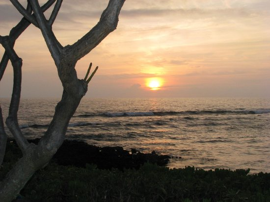 Keauhou Kona Surf And Racquet Club Resort : Plumeria tree &amp; sunset from unit 198 