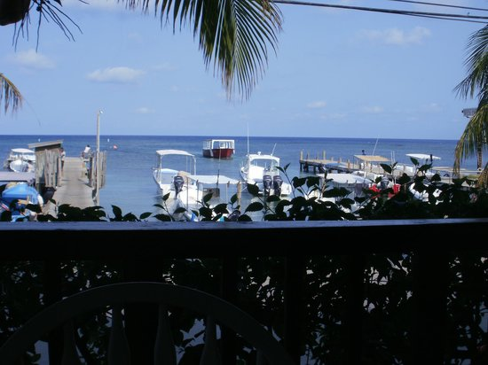 Splash Inn Dive Resort: View from the breakfast table every morning