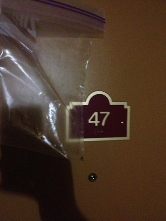 Downtown Value Inn: Room 47 with bed bugs!