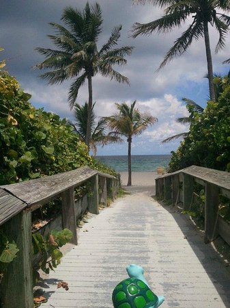 Hollywood Beach Coral House: Take a walk to the beach!