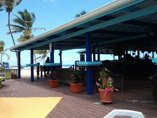 Hibiscus Beach Resort: The restaurant/bar.