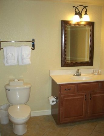 Wyndham Bonnet Creek Resort: Clean bathroom