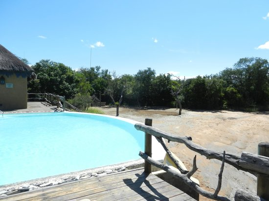 Kapama River Lodge: main pool area