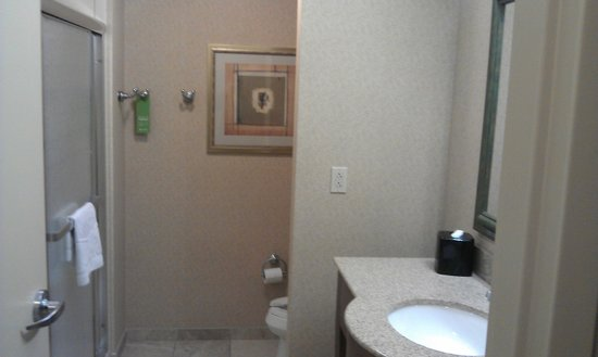 Hampton Inn & Suites Pittsburgh - Downtown: Bath