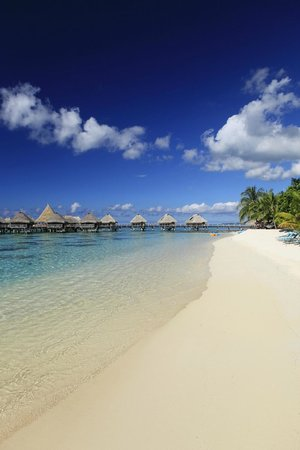 Hilton Moorea Lagoon Resort & Spa: private beach