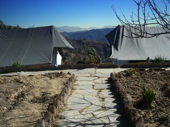 Wildrift Adventures -  Camp Purple Mukteshwar