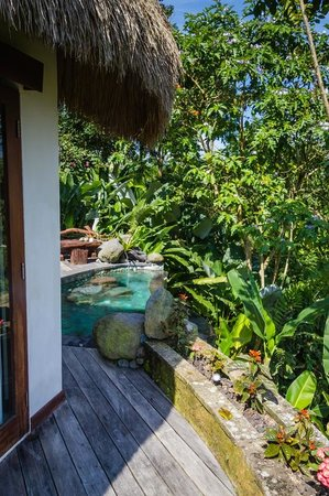 Dara Ayu Villas &amp; Spa: Plunge pool