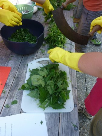 Vaud, Schweiz: Outdoor cooking class