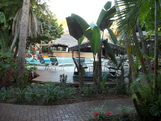 BEST WESTERN Naples Inn & Suites: view from room
