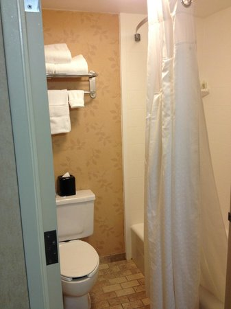 Holiday Inn Grand Rapids Downtown: Inside Bathroom