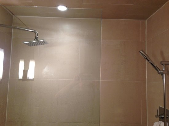 Mill Street Inn: Shower stall