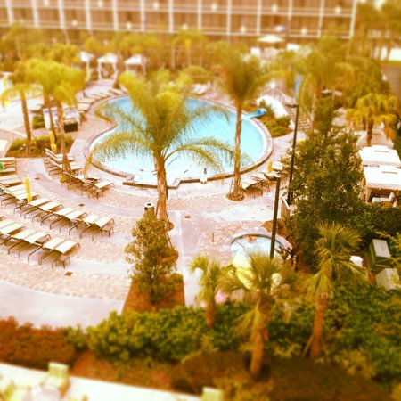‪‪Sheraton Vistana Resort - Lake Buena Vista‬: View from the room‬