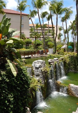 Hyatt Regency Aruba Resort and Casino: Beautiful grounds