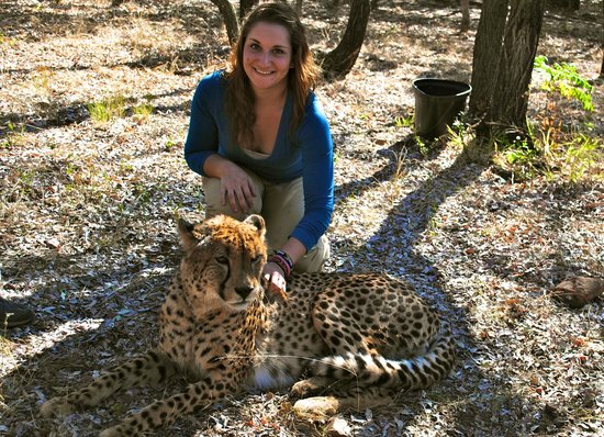 Gauteng, South Africa: Cheetah Encounter